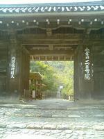 Photo_100